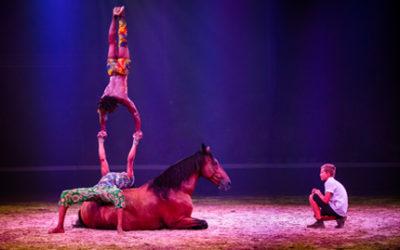 Le festival Equestria en images